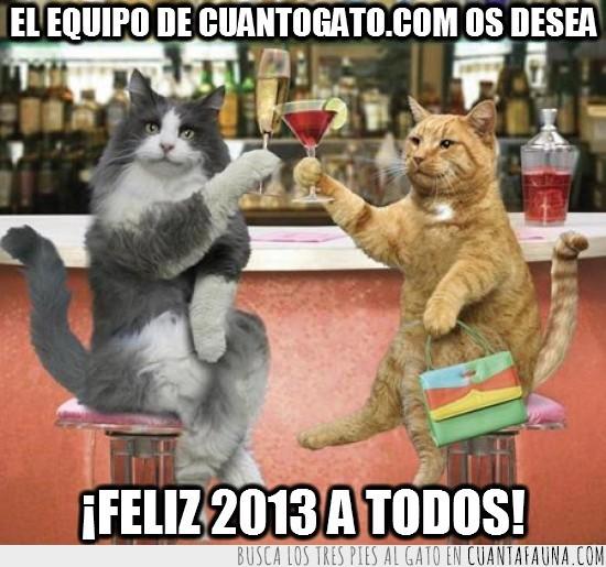 brindando,brindar,feliz 2013,gato,gatos,gatunas,navidades,nochevieja