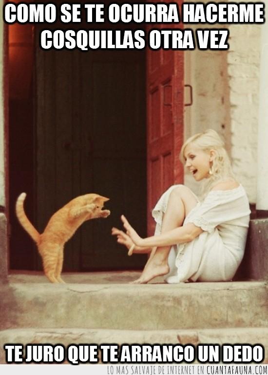 escaleras,gato,hacer cosquillas,puerta,rubia,vestido blanco