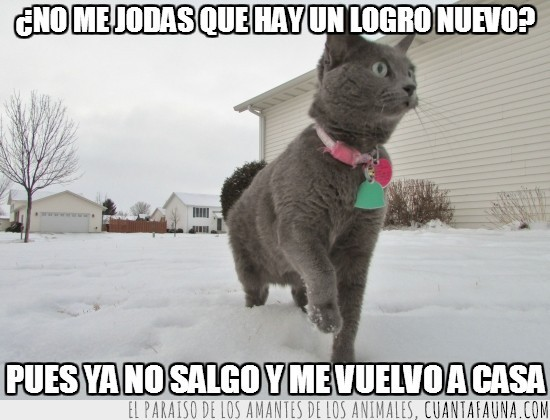 cuanto gato,logro,navidad,nevada,nieve,salir