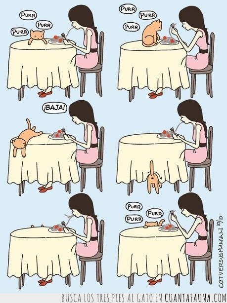 baja,comida,espaguetis,gato,mesa,purr