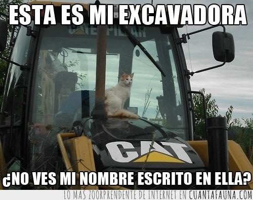 cat,escrito,excavadora,gato,nombre,tractor