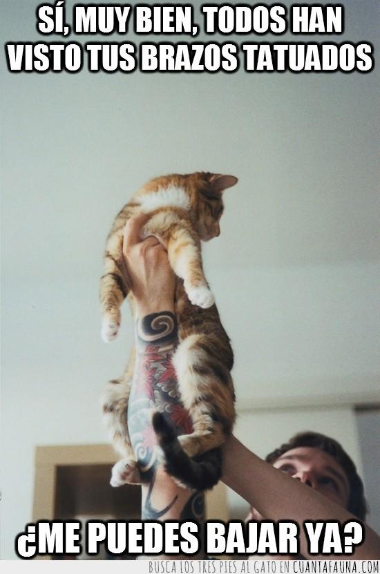 brazos,humano,idiota,rabia,rey leon,tatuados,tatuaje