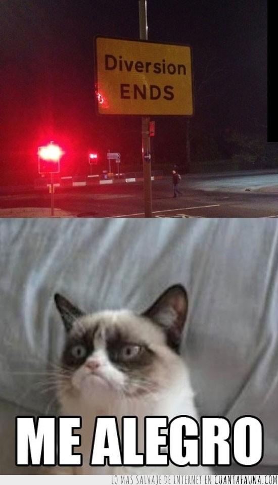 diversion end,gato gruñón,gumpy cat,me alegro