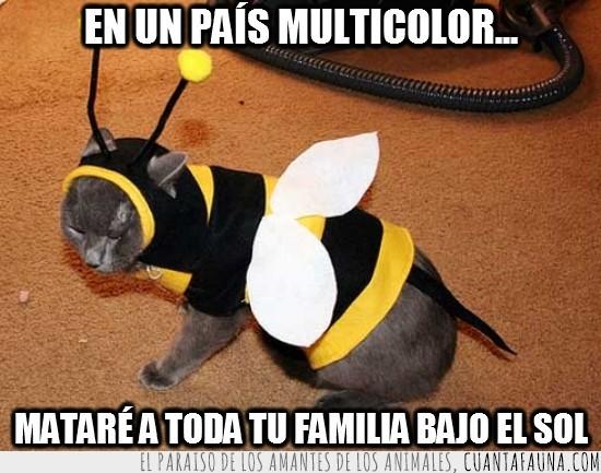 abeja maya,aguijón,avispa,disfraz,gato,pais multicolor