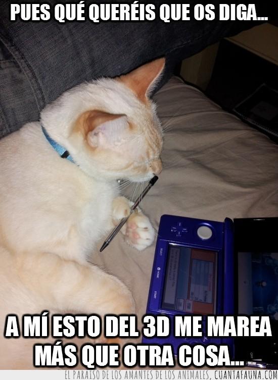 consola,gato,gracioso,nintendo 3ds,pantalla tactil,sofa,tumbado,videojuegos