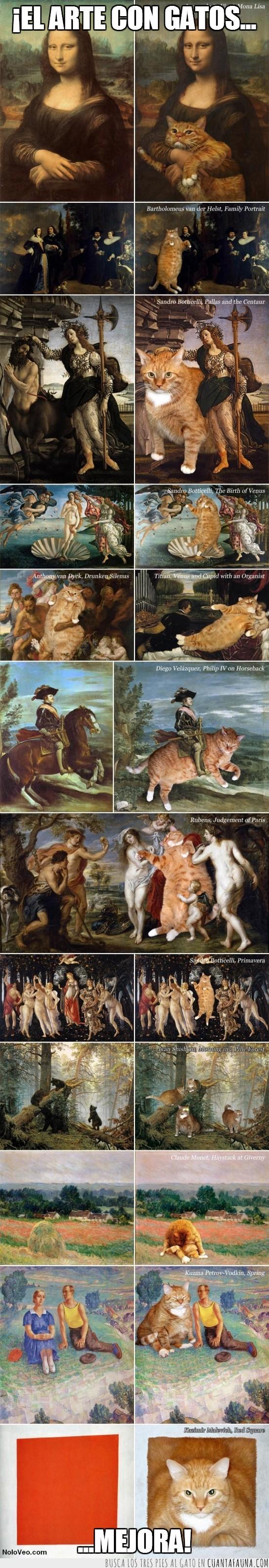 arte,con gatos,cuadros,mejora,pinturas