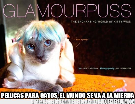 gato,glamour,horrible,mundo a la mierda,peluca