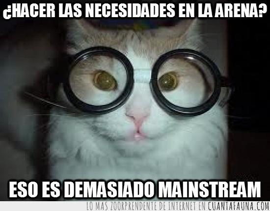 arena,gafas,hipster,mainstream,ojos,raros