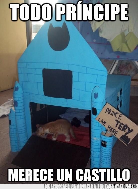 castillo,gato,merecer,principe,tery