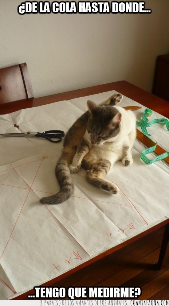 cinta metrica,cola,hasta donde,medir,patrones,planos