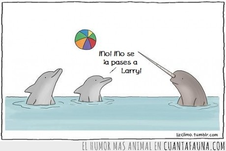 animales,delfín,jugar,larry,pelota,sin amigos