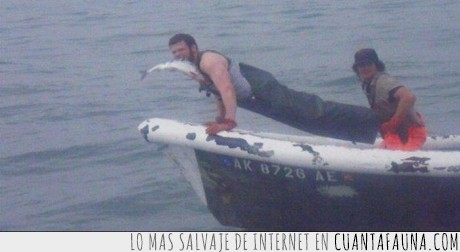 anzuelo,barca,barco,boca,caña,morder,pesca,pez