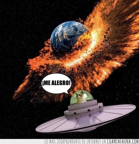 destruir mundo,gato gruñon,good,Grumpy cat,nave espacial,planeta,tierra