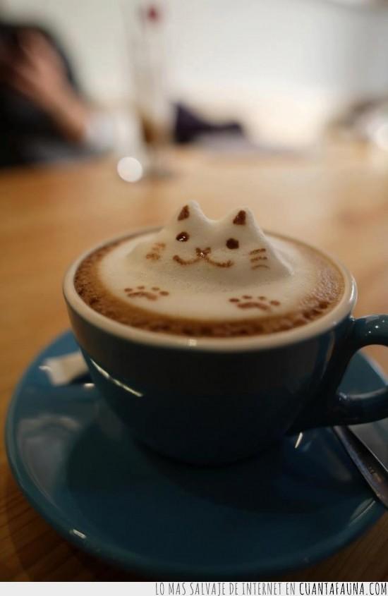 bonito,cafe con leche,espuma,gato,miau,taza