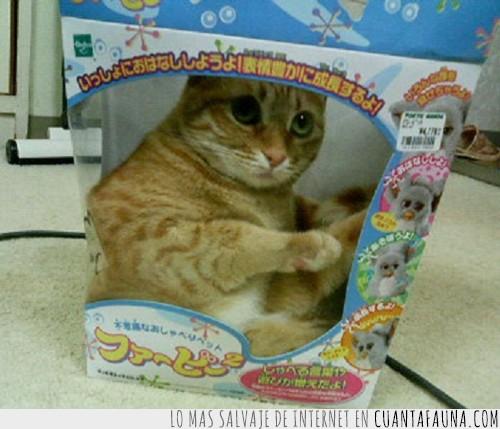 empaquetado,furby,gato,juguete,vender