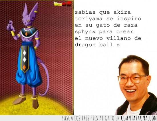 akira toriyama,bills,dragon ball z,gato,pelicula,villano