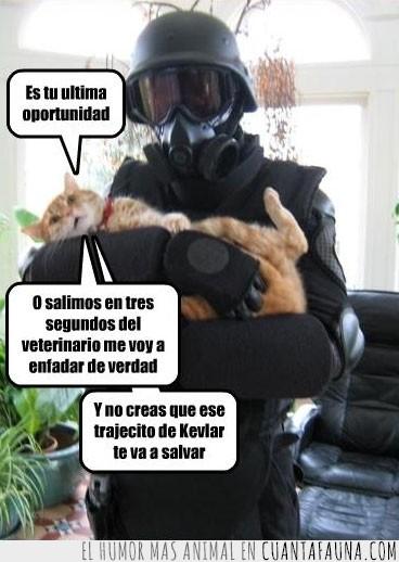 amenaza,blindaje,kevlar,mascara,soldado,veterinario