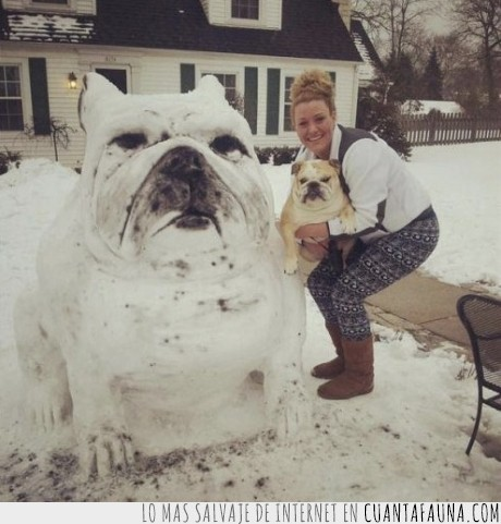 casa,frio,muñeco,nieve,perro