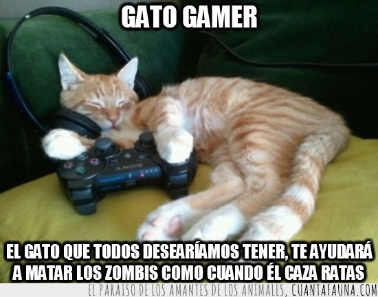 gamer,gato,mando,playstation,que crack,rata,zombis
