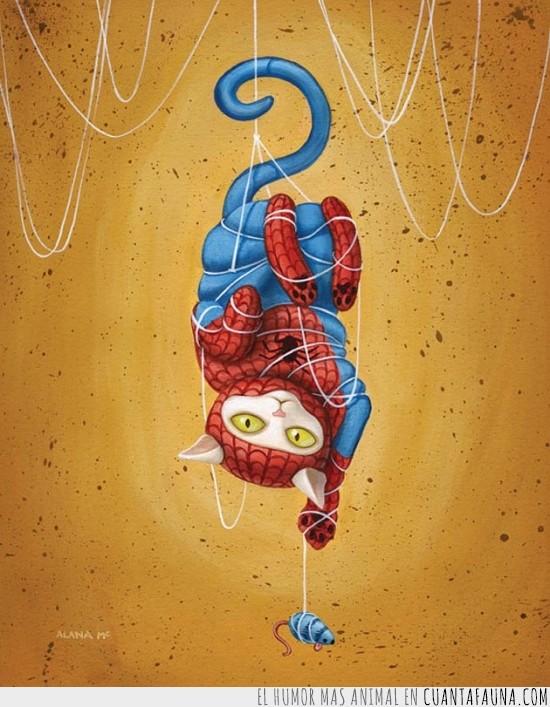 dibujo,el gato araña,spider-gato,spidergato,spiderman,telaraña