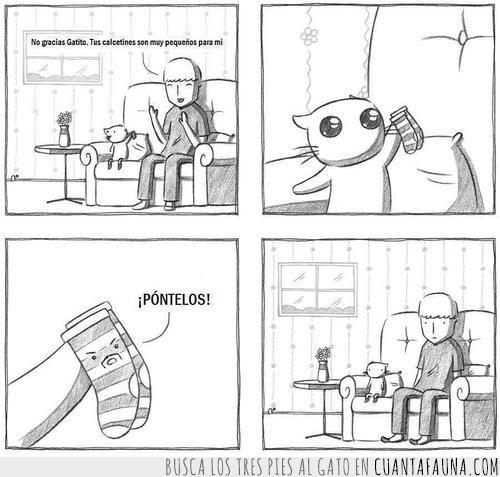 calcetines,comic,gatito,gato,sofá