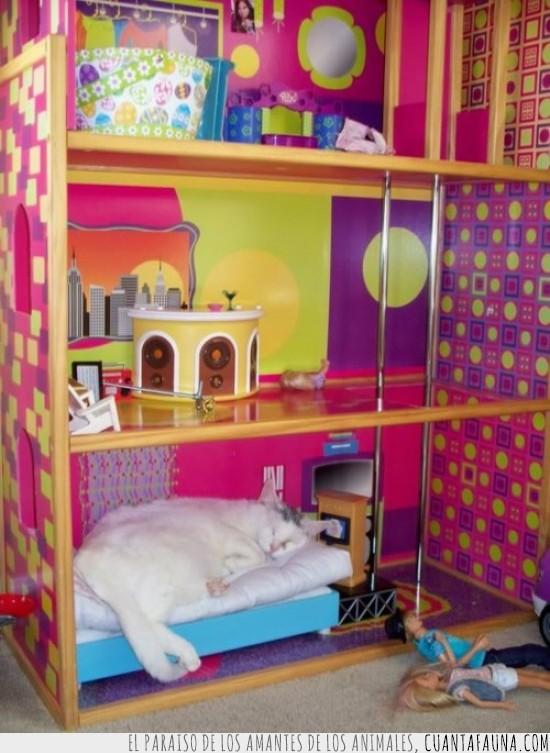 barbie,cama,casa de la barbie,dormir,gato,muñecas