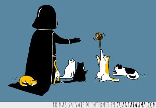 darth vader,fuerza,gatos,lado oscuro,ovillo de lana