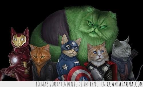 avengers,catengers,gatos,heroes,vengarores