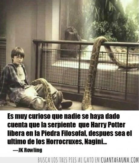 Harry Potter,horrocrux,JK Rowling,libro,magia,pelicula,serpiente