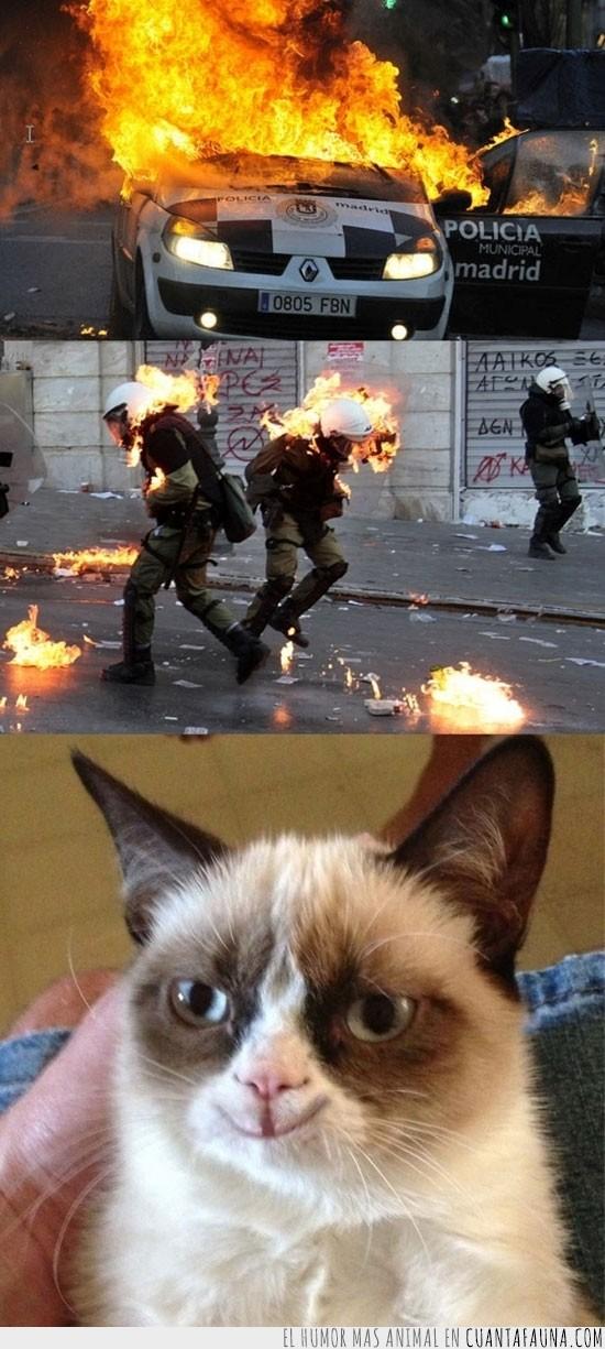 alegre,Arder,Grumpy Cat,maldad,maligno,policia