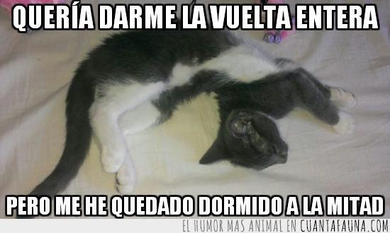 contorsionista,dar la vuelta,dormir,gato,girarme,no estoy roto