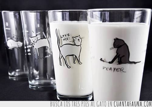 decorados,gatos,leche,vasos