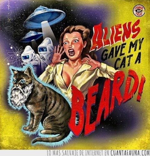 aliens,aliens gave my cat a beard,barba,gato