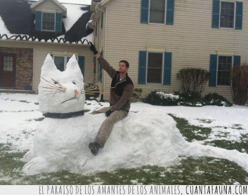 gato,gato de nieve,gigante,montar,nieve