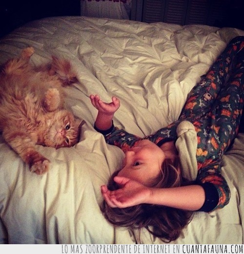 cama,gato,igualitos,imitar,jugar,niña