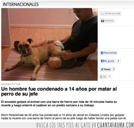 carcel,condena,eeuu,jefe,justicia,matar,perro,usa