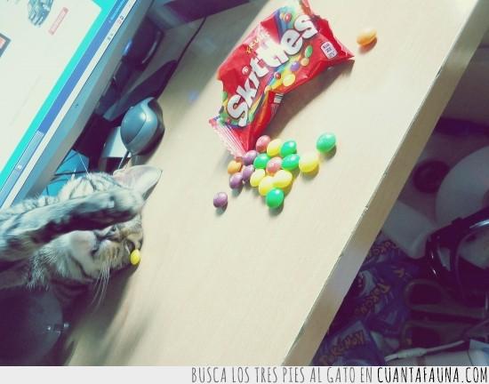 bonito,Caramelos,jugando,mesa,skittles