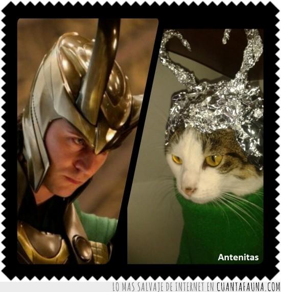 Antenitas,Capa,Casco,Contral Humano,Control del mundo,Control universal,Dios,Loki,Poder,Thor