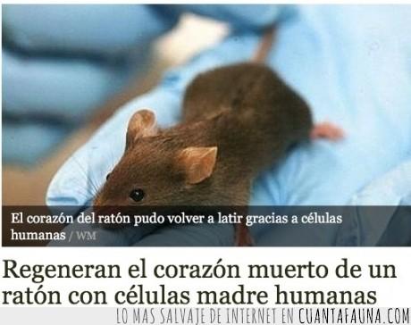 corazon,miedo,raton,zombies