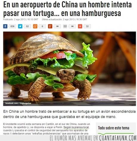 aeropuerto,China,hamburguesa,tortuga,wtf