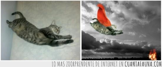 Capa,Heroe,Heroina,Superman,Volar