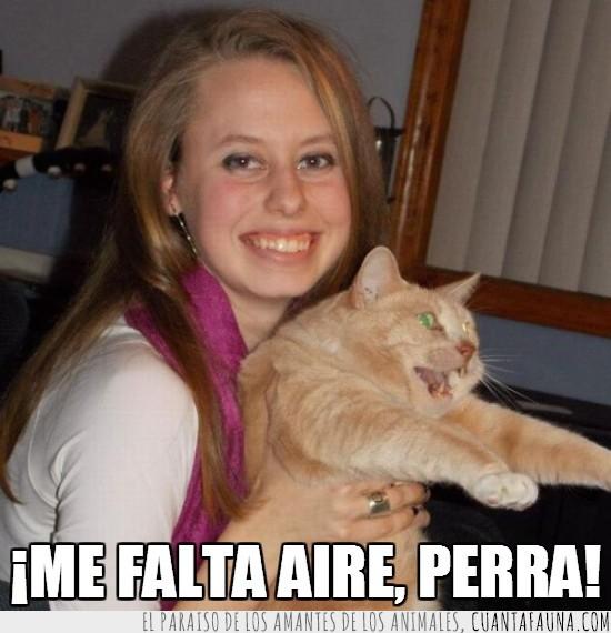 Abrazo,Ahogar,Aire,Falta,Foto,Gato,Perra,Rubia