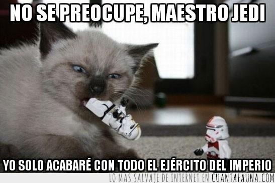 Enemigos,Gato,Imperio,Jedi,La guerra de las galaxias,Lego,Muñeco,Soldados,Star Wars