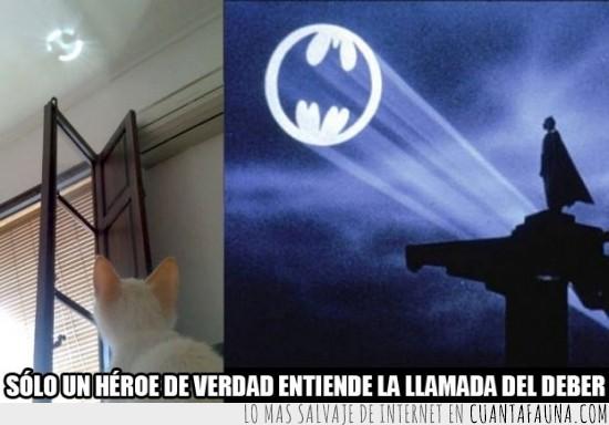batllamada,batman,cielo,deber,foco,heroe,llamar,luz
