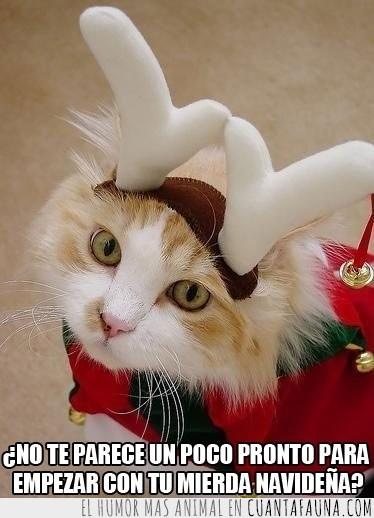 cuernos,disfraz,gato,mierda navideña,navidad,odiar,reno