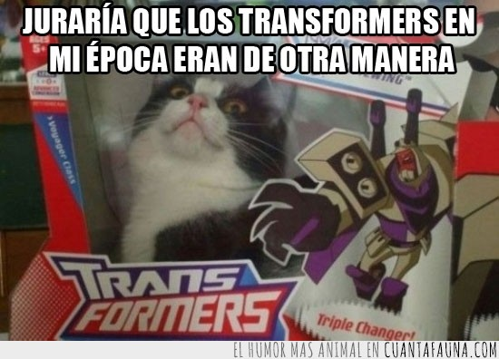 Caja,Gato,Juguete,Producto,Robot,Shut up and take my money,Transformers