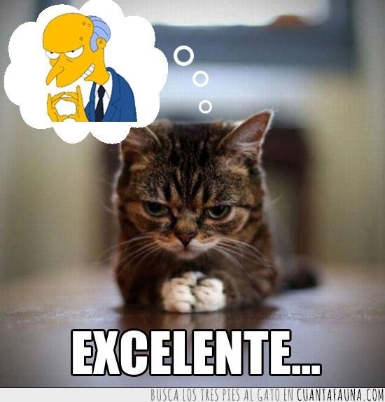 evil,excelente,Gato,los Simpson,Montgomery Burns,plan