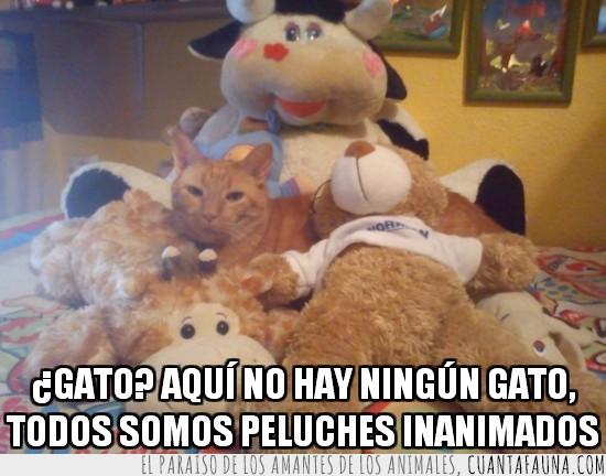 disimulado,gato,muñecos,peluches