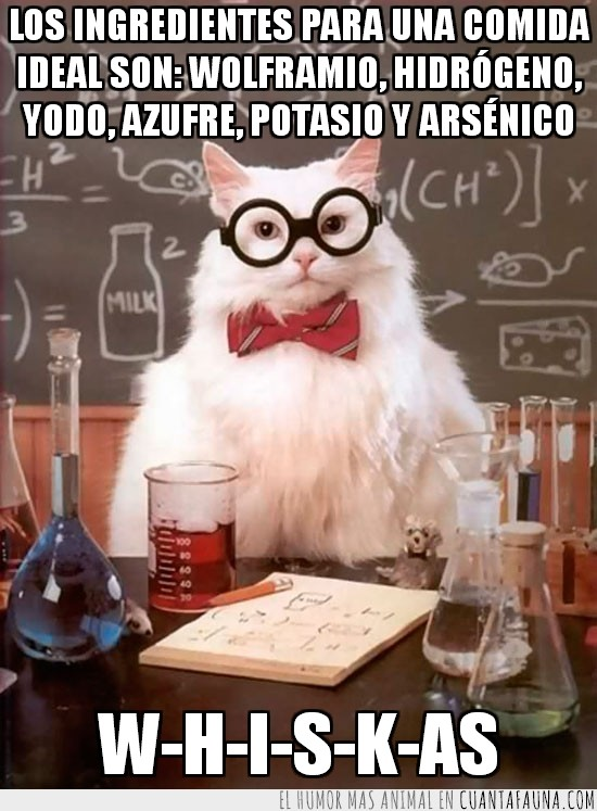 Advertencia: no le des arsénico a tu gato,comida ideal,elementos,gato científico,gato químico,ingredientes,tabla periódica,Whiskas