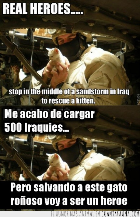 asesino,gatito,heroe,iraqui,soldado